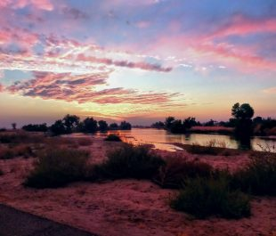 Kern River | Photo by Lia Mendez/Bring Back the Kern