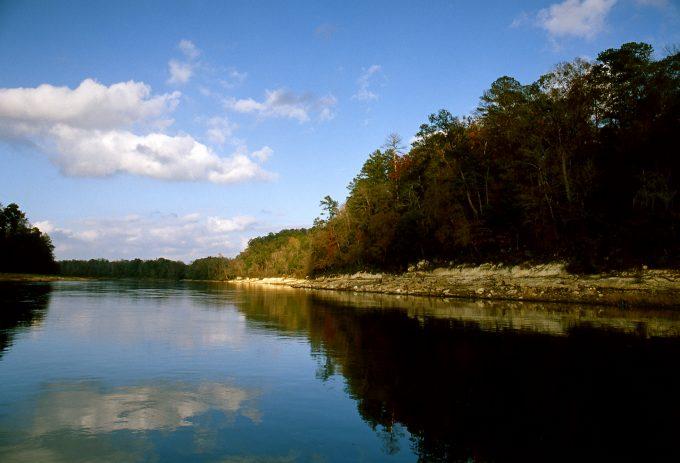 Apalachicola River, FL | Photo by Lew Wilson