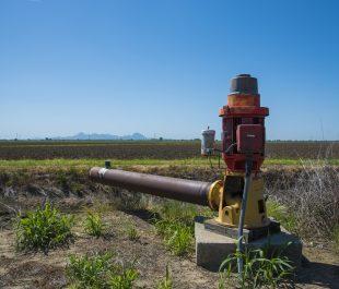 Pump rice field | Photo by Sam Mills