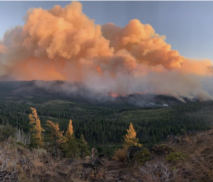 Oregon wildfires on Sept. 8, 2020 | Photo by Bureau of Land Management