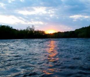 Yadkin River Shoals | Photo by Christine Rucker