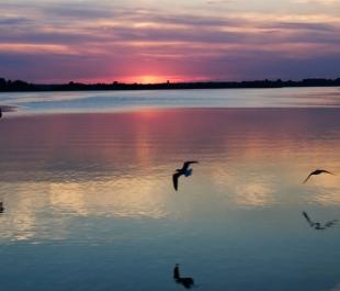 Cape Fear River, NC | Photo by Soch Anam