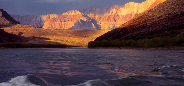 Colorado River, AZ | Photo by Tim Palmer