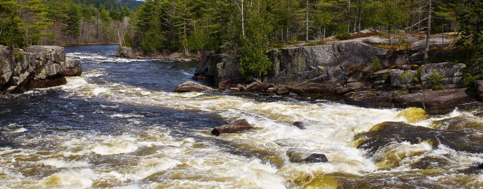 Penobscot River, ME | Photo by Tim Palmer