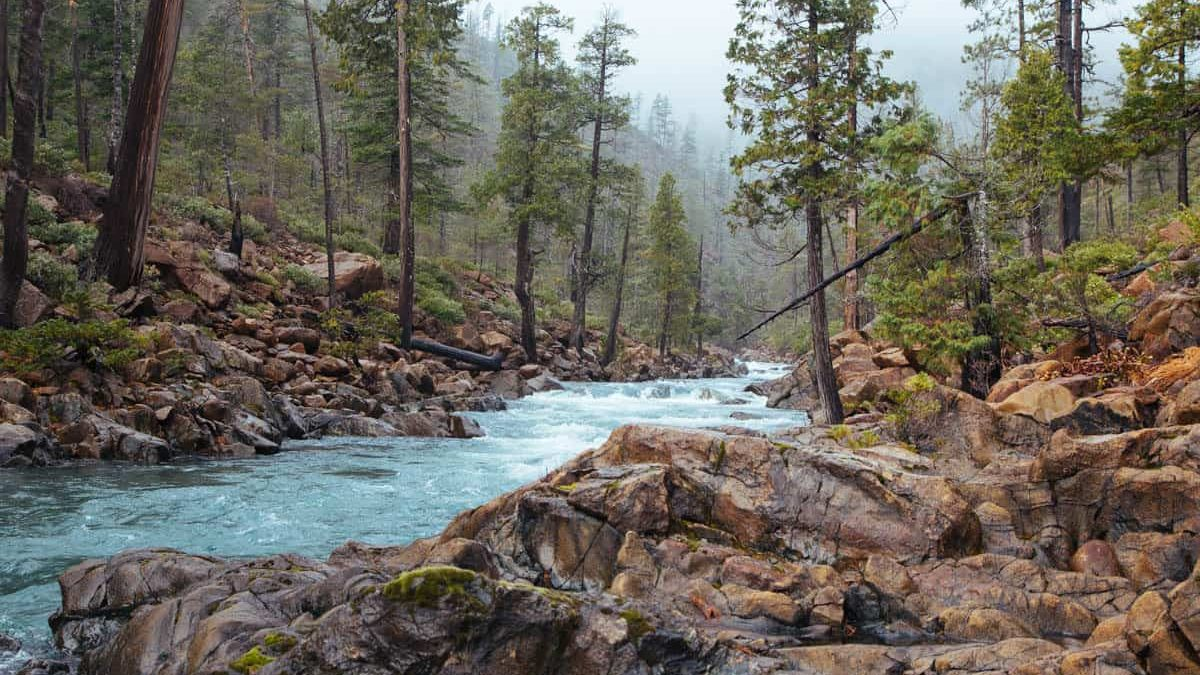 Rough and Ready Creek, OR   Photo by Northwest Rafting Co./Zach Collier