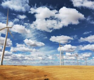 Wind Turbines in Wheat Field | Photo by Daniel Parks
