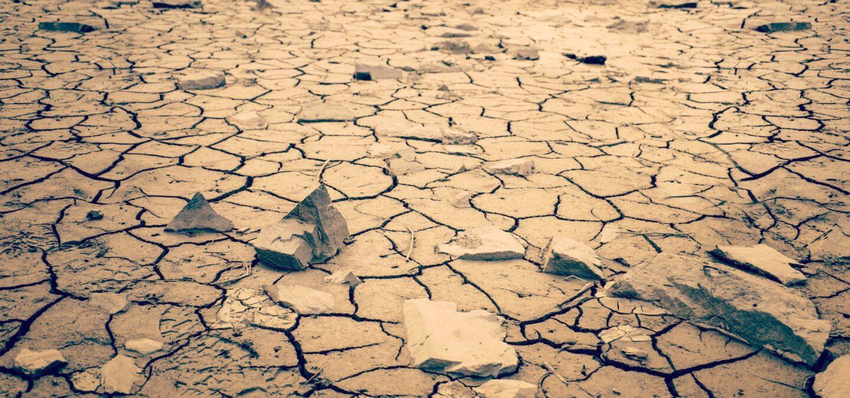 Cracked earth | Photo by Joshua Woroniecki