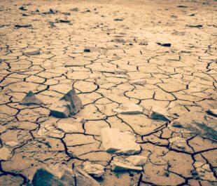 Cracked earth   Photo by Joshua Woroniecki